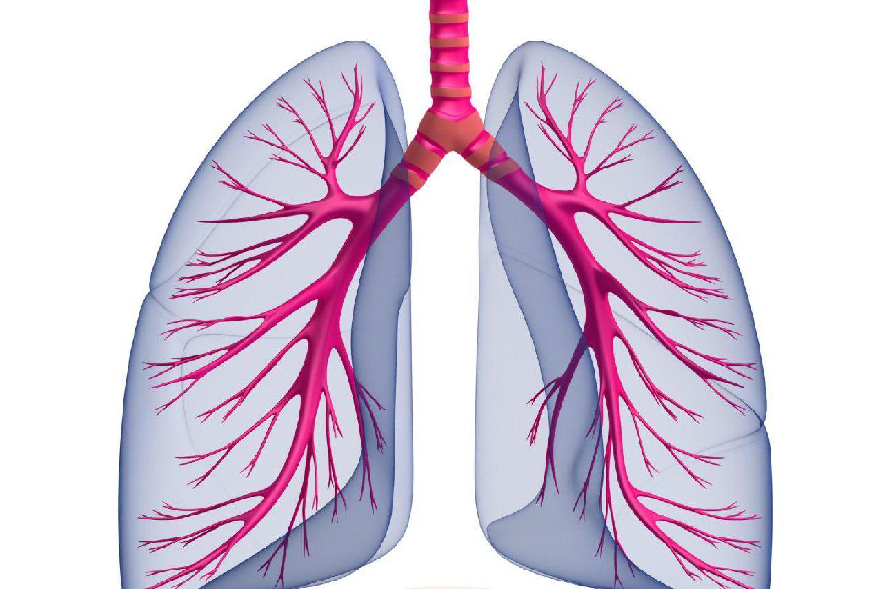 respirazione consapevole