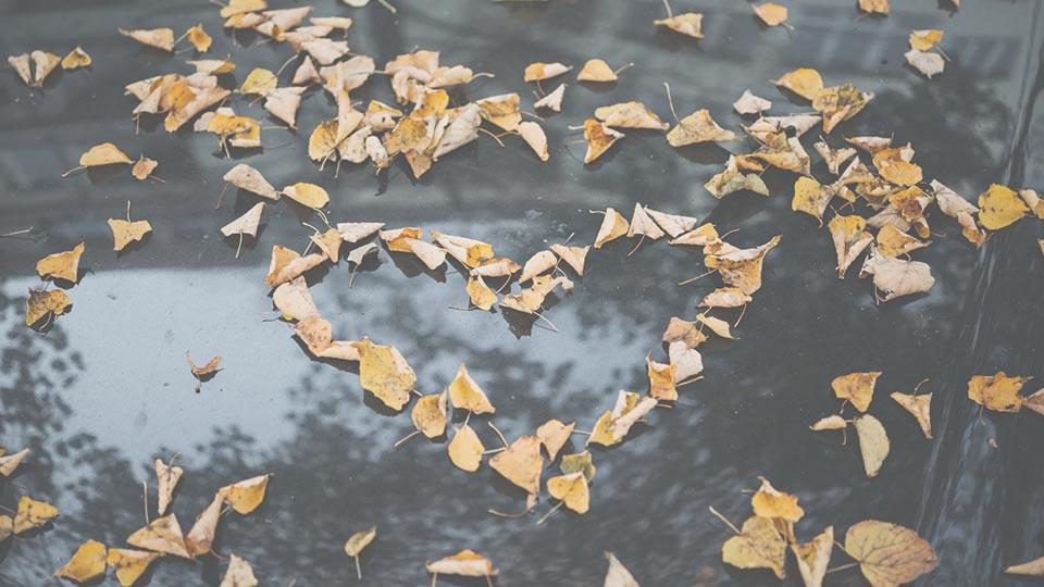 positività amore scuola naturopata